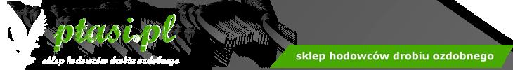 ptasi.pl - sklep hodowców drobiu ozdobnego